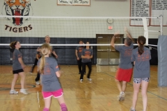 FEEE Volleyball Tournament, November 2010